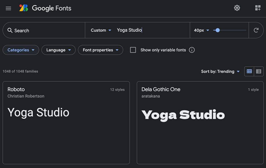 Google fonts | Modulo di ricerca, Simulazione nome Brand