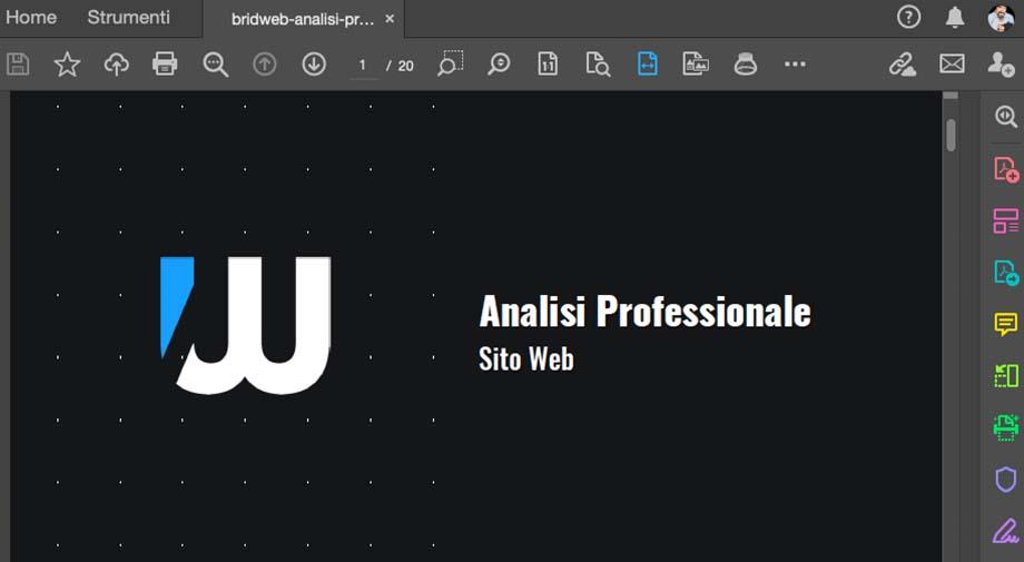 Analisi Professionale Sito Web - Report